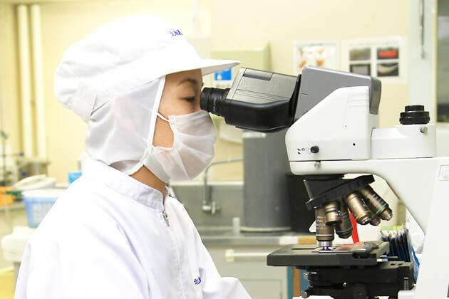 生乳総菌数検査